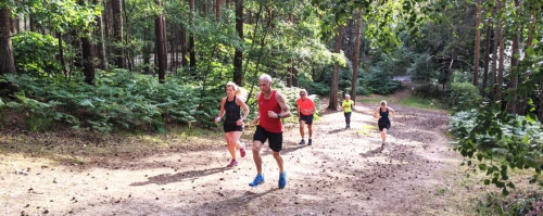 Runners hill training in Bourne Woods