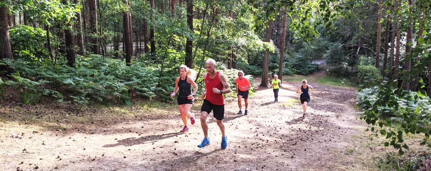 Runners running up a steep track in Bourne Woods