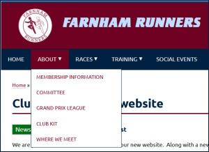 Example of menus on new website