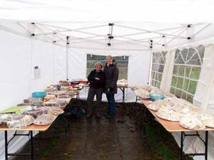 Sandwiches and cakes laid out for lunch at the 2014 SXCL race at Farnham