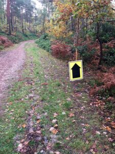 Route sign in the woods for the the 2020 Club Championship