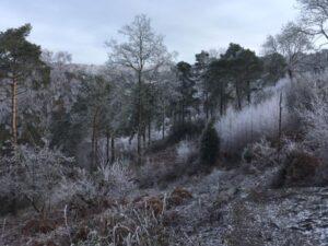 2021 Covid runs - Devils Punchbowl frosty scene